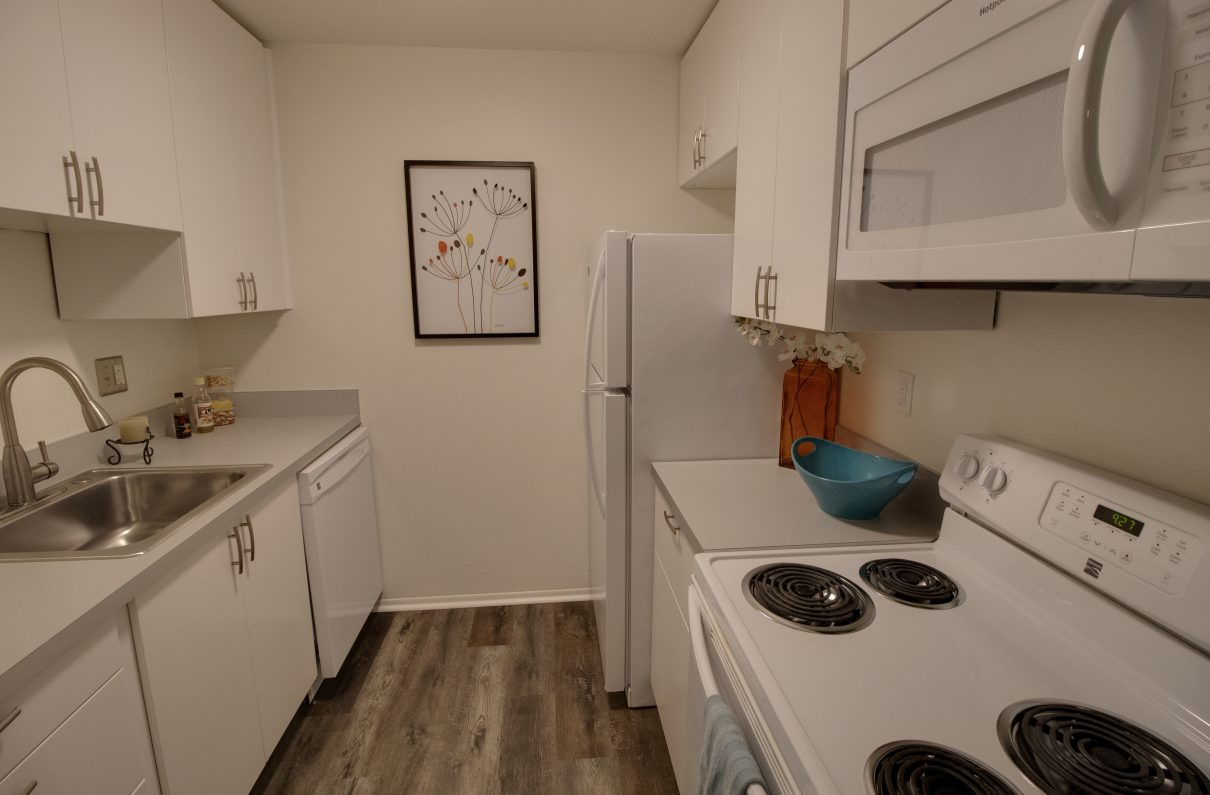 Broadview Apartments 1 2 Bedroom Apartments For Rent In Aa