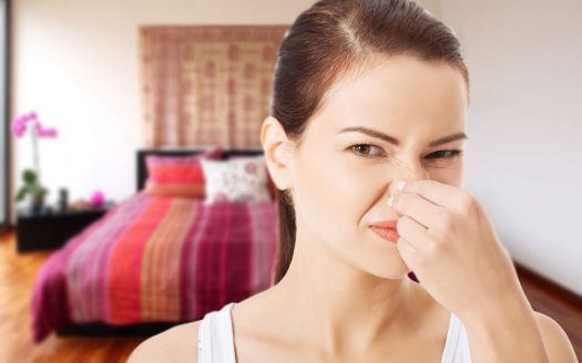 How to Eliminate Foul Apartment Odors